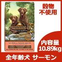 7月6日入荷。ピナクル グレインフリー サーモン&ポテト (全年齢犬対応) 10.89kg 【リパック対応】【並行輸入…