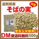 【DM便送料無料】そばの実 滋賀県産 500g 国産 ヌキ実 蕎麦の実 実そば 国産そばの実 そば米 粒そば 穀物 抜きそば 蕎…