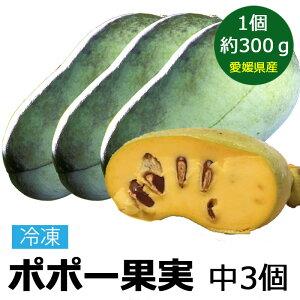 冷凍 ポポー 幻の果実 中(300g前後) 3個国産 果物 愛媛県 ぽぽー ポーポー アケビガキ カスタードアップル 名医のTHE太鼓判 【マンゴー バナナの味に似ていると言われています】