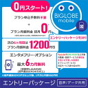 【メール便限定】BIGLOBE(ビッグローブ)モバイル エントリーパッケージ データSIM SMS機能付きデータ通信SIM 音声通…