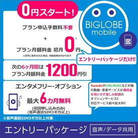 【メール便限定】BIGLOBE(ビッグローブ)モバイル エントリーパッケージ データSIM SMS機能付きデータ通信SIM 音声通話SIM【ネコポス送料無料】【smtb-u】【RCP】※※SIMカードは同梱されません※※ 格安SIM