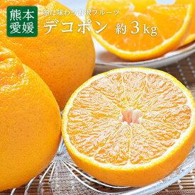 【送料無料】熊本・愛媛県産 デコポン10〜12玉 約3kgデコポン 箱 でこぽん 贈答用 デコポン
