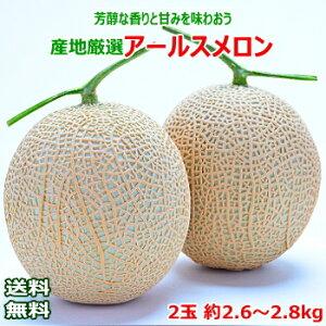 【送料無料】産地厳選 アールスメロン2玉 約2.6〜2.8kg