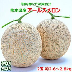 【送料無料】熊本県産 アールスメロン2玉 約2.6〜2.8kg