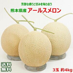 【送料無料】熊本県産 アールスメロン3玉 約4kg