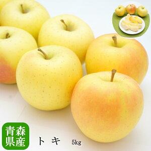 送料無料 青森県産 トキ りんご 14-18玉 約5kg トキ 高糖度 トキ 5kg りんご 5kg トキ 送料無料 リンゴ 青森産 りんご 林檎