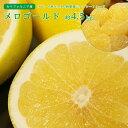 【送料無料】カリフォルニア産 メロゴールド7〜9玉 約4.5kg【グレープフルーツ オロブロンコ ギフト 贈答 プレゼン…