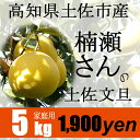 【家庭用】楠瀬さんの土佐文旦 5kg