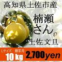 【贈答用】楠瀬さんの土佐文旦 L/10kg