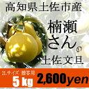 【贈答用】楠瀬さんの土佐文旦 2L/5kg