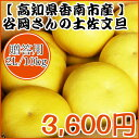 【贈答用】谷岡さんの土佐文旦 2L/10kg