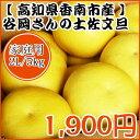 【家庭用】谷岡さんの土佐文旦 2L/5kg
