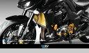 【送料無料!!】Dimotiv(DMV) ラジエーターカバー(Standard Radiator Protective Cover)KAWASAKI Z1000...