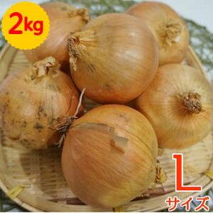 単品 たまねぎ(玉ねぎ・タマネギ・玉葱) L 2kg