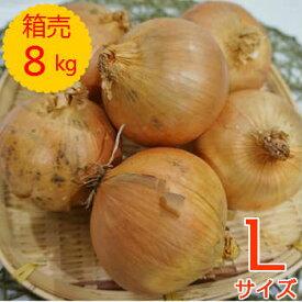 【送料無料!】箱売 たまねぎ(玉ねぎ・タマネギ・玉葱) L玉 1箱(8kg) 使い切りサイズ