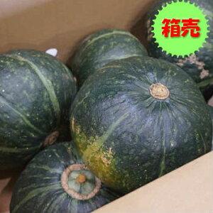 【送料無料】【国産】箱売 かぼちゃ(南瓜 カボチャ) 1箱10kg(4〜7玉)