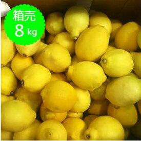 【送料無料】箱売 レモン 1箱(8kg)使い切り