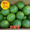 送料無料【大分産】箱売 かぼす(カボス)1箱 目安2kg