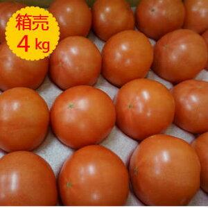 【クール便送料無料】【九州産】箱売り トマト(とまと) 1箱(目安4kg 20〜28玉 満杯詰め)