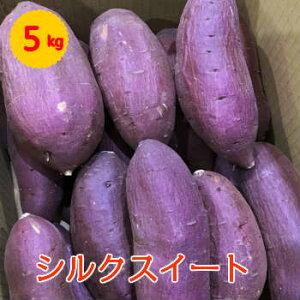 【送料無料】箱売 シルクスイート さつまいも(シルクスィート サツマイモ) 1箱(5kg L〜M)