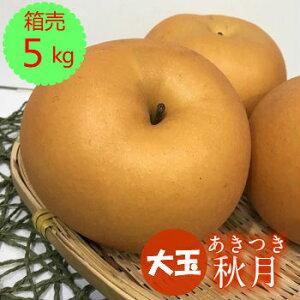 送料無料【九州産】箱売 梨 秋月(なし ナシ あきづき)大玉 1箱目安5kg(8〜11玉)