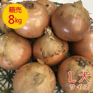【送料無料!】箱売 たまねぎ(玉ねぎ・タマネギ・玉葱) L大玉 1箱(8kg) 使い切りサイズ