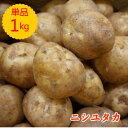 【九州産】単品 新じゃが(にしゆたか ニシユタカ じゃがいも)1kg