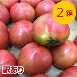 訳あり品【クール便送料無料】【九州産】箱売り トマト(とまと) 2箱 (目安4kg  満杯詰め)