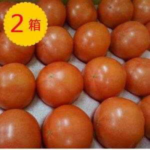 【クール便送料無料】【九州産】箱売り トマト(とまと) 2箱(目安4kg 20〜28玉 満杯詰め)