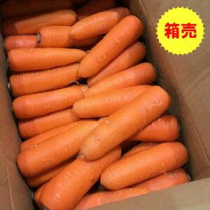 【送料無料】箱売り 人参(にんじん・ニンジン)1箱(10kg)