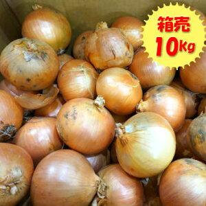 送料無料【九州産】箱売 玉ねぎ(たまねぎ・玉葱)1箱(10kg) LorMsize