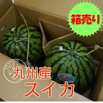 【九州産】箱売り スイカ(すいか・西瓜) 1箱2玉入り