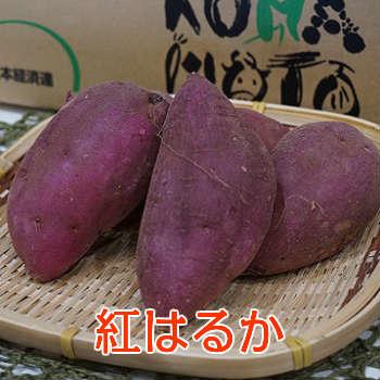 【九州産】単品 紅はるか (べにはるか さつまいも) 焼き芋に最適♪ 1kg