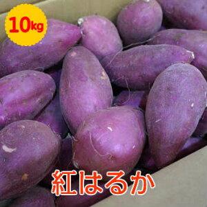 【送料無料】【九州産】箱売り 紅はるか(べにはるか さつまいも) 1箱(10kg)