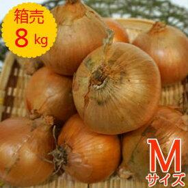 【送料無料!】箱売 たまねぎ(玉ねぎ・タマネギ・玉葱) M玉 1箱(8kg)