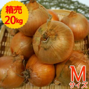 【送料無料!】箱売 たまねぎ(玉ねぎ・タマネギ・玉葱) M玉 1箱(20kg)