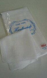 【メール便/送料込み】日本製(薄手)ガーゼハンカチ10枚組 吸湿性が良くお肌にやさしい白無地ガーゼ 赤ちゃんの沐浴用に。【送料無料】手作りマスク 生地 手作り マスク 材料 即納