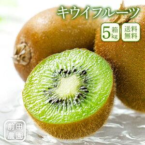和歌山県産 キウイフルーツ 5kg箱 ご家庭用