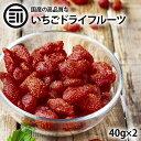 【送料無料】 完全 国産 ちょっと贅沢な プレミアム リッチ セミ ドライフルーツ いちご 苺 2袋(100g) おやつ お菓…