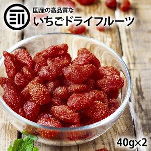 【送料無料】 完全 国産 ちょっと贅沢な プレミアム リッチ セミ ドライフルーツ いちご 苺 2袋(100g) おやつ お菓子作り おつまみ トッピング ポイント消化 買い回り