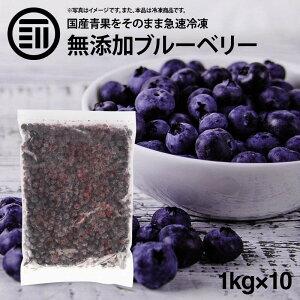 国産 熊本県産 ブルーベリー 冷凍 1kg(1000g) x 10袋 無添加 ばら バラ ぶるーべりー アントシアニン 食物繊維 果物 果実 フルーツ おやつ トッピング ヨーグルト ジャム スムージー ジュース お