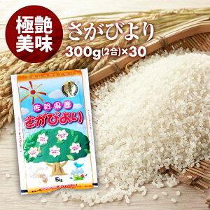 無洗米 プロが選ぶ厳選 一等米 米 食味ランク 特A さがびより 2合 (300g) 30パック 精米 佐賀県産