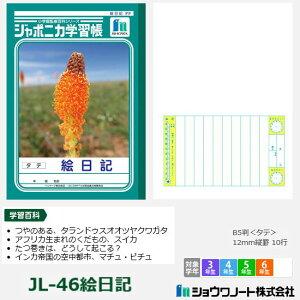 ジャポニカ学習帳 小学校高学年 絵日記 ショウワノート
