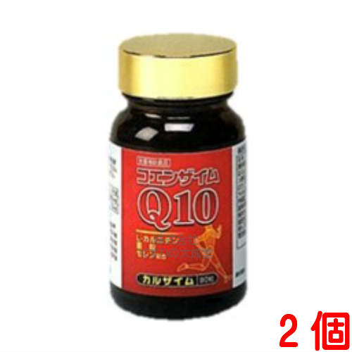 カルザイム90粒 2個第一薬品工業
