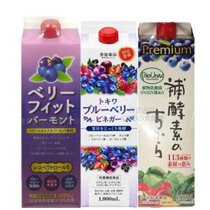 ブルーベリー酢 セット ブルーベリービネガー プレミアム補酵素のちから ベリーフィットバーモント