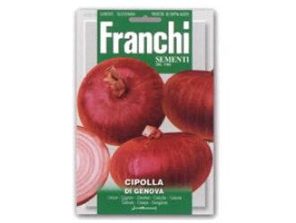 法蘭基,熱那亞,洋蔥珀迪熱那亞