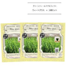 A281【3個セット】有機種子《ウィートグラス(スムージー&ジュース用)×3個》【固定種】【メール便配送】グリーンフィールドプロジェクト種子