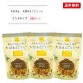 KaRuNa(かるなぁ)大豆まるごとミートミンチタイプ100g