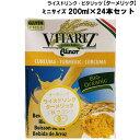 Vitarit200ml 24 ts