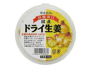 信州自然王国 国産ドライ生姜 砂糖漬け《70g×20個セット》【送料無料】